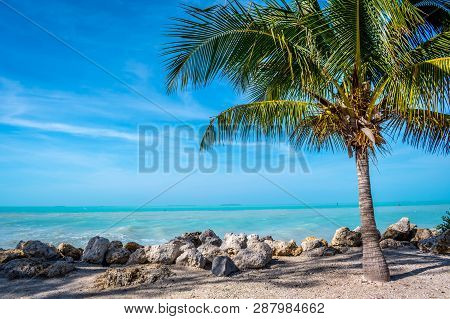 The Overlooking View Of The Shore In Key West, Florida