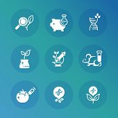 Genetic modification biotechnology and dna research vector icons set. Science research, biotechnology dna icons, genetic and medical illustration poster