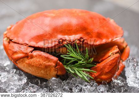 Fresh Crab With Ingredients Lemon Rosemary On Ice / Seafood Shellfish Steamed Red Crab Or Boiled Sto