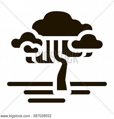 Savanna Tree Glyph Icon Vector. Savanna Tree Sign. Isolated Symbol Illustration