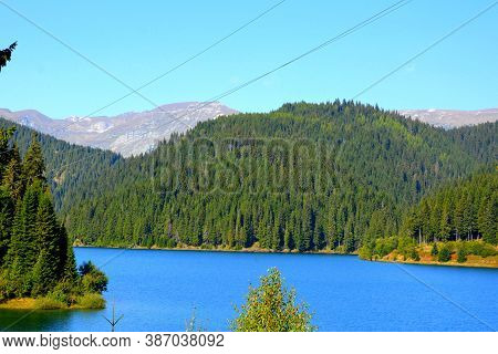 Bolboci Lake In Bucegi, Carpathian Mountains. Typical Landscape In The Forests Of Transylvania, Roma