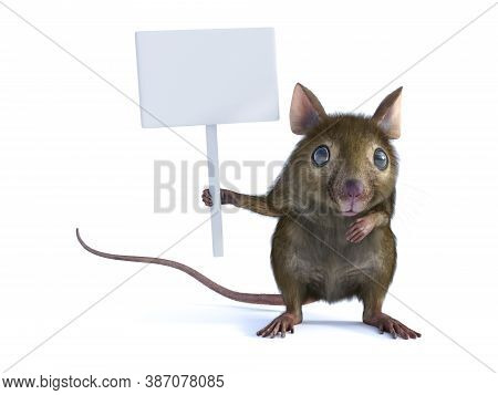 3d Rendering Of A Cute Mouse Standing Up On Two Legs And Holding A Blank Sign In Its Hand Or Paw. Wh