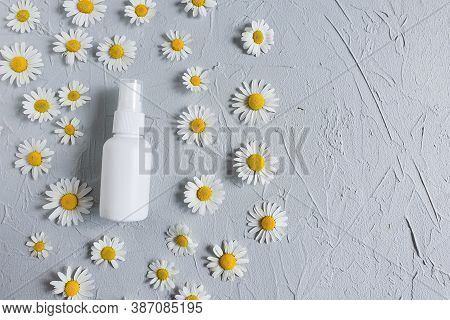 Top View And Close-up Of White Plastic Spray Bottle Mock-up And Chamomiles Flowers On A Gray Backgro