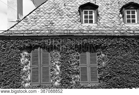Deserted House In France In Black And White. Facade Of A Stone House Decorated With Wild Vine In Fre