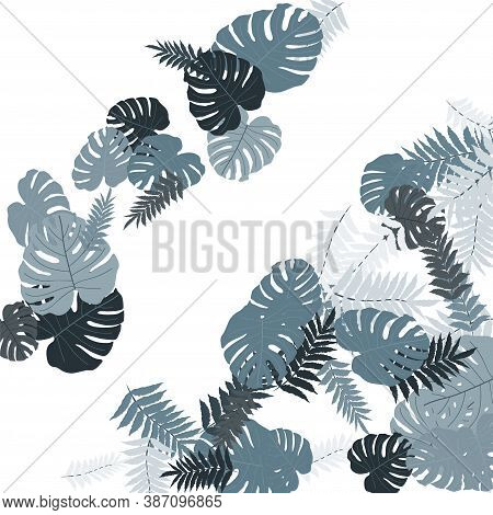 Vector Tropical Pattern, Bright Tropical Foliage, Monstera Leaves. Modern Bright Summer Print Design