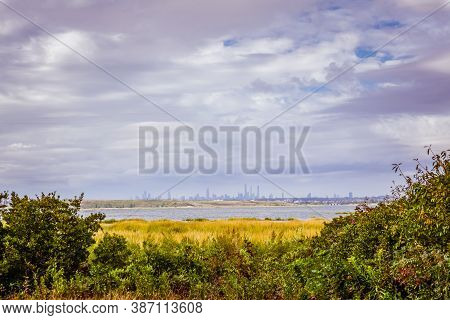Tall Grass Field With And Bushes Over Pond With Nyc Buildings In The Background