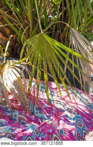 Boho style colorful ottoman pouf in garden outdoor decor