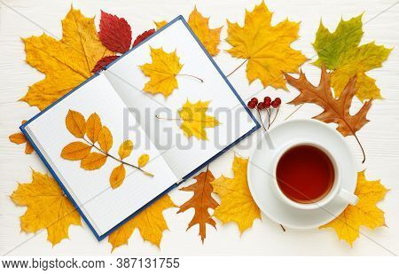 Composition Of Yellow Autumn Leaves, Notebook And Tea Cups. Autumn Mood Concept. Flat Lay, Top View