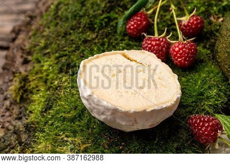 Camembert Or Brie French Soft Cheese With Berries. Fresh Brie Cheese With White Mold. Banner, Cateri
