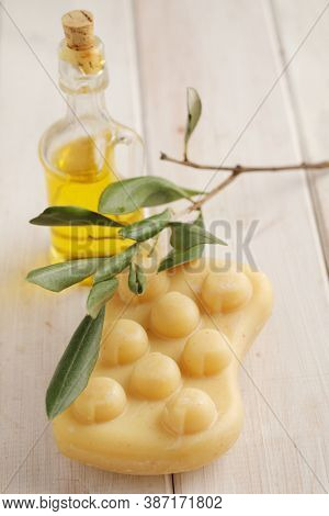 Organic olive soap, bottle of olive oil, and a branch of olive tree
