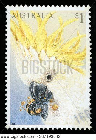Australia - Circa 1991: A Stamp Printed In Australia Shows Cockatoo (cacatua Galerita) Parrot., Circ