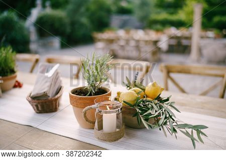A Table With A Flower In A Flowerpot, A Bowl Of Lemons And A Mug With A Candle Outside With Shallow