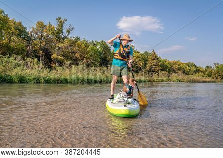 senior paddler is paddling stand up paddleboard with his pitbull dog on a shallow river - Dismal River at Nebraska National Forest, early fall scenery