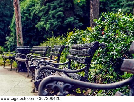 Park With Benches.park In The Summer Time.order Of Benches To Rest On.walking Through The Park.green