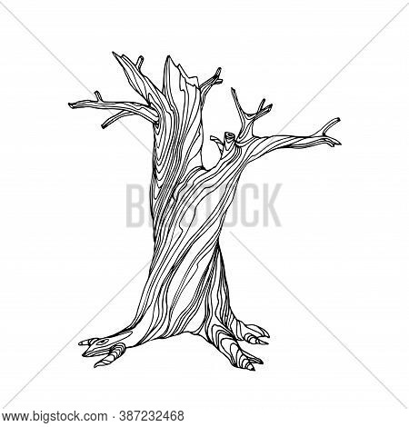 Dry Dead Tree With Lifeless Branches The Mystical Character Of Halloween Holiday, Vector Illustratio