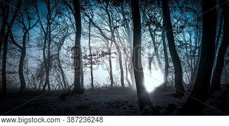 dark misty forest panorama fantasy halloween landscape