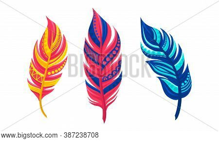Decorative Curved Feathers As Avian Plumage Vector Set
