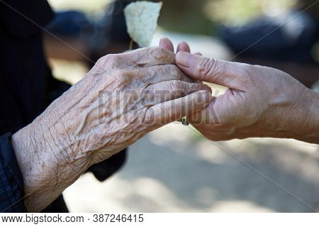 Helping Hands. Care For The Eldery Concept. Two Womans Hands.