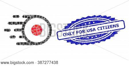 Vector Mosaic Core Flight, And Only For Usa Citizens Unclean Rosette Seal Print. Blue Seal Contains