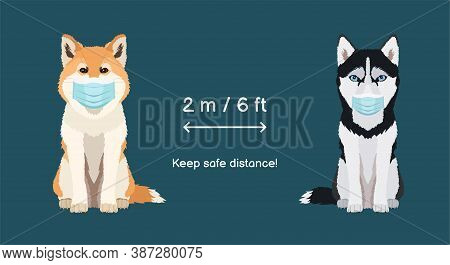 Keep The Deistance 2 M 6 Ft. Coronavirus Infection Spreading Prevention Information Sign With Dogs W