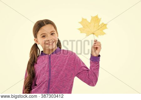 Kids Fashion. Kid Isolated On White Show Yellow Leaf. Black Friday Concept. Autumn Is Second Spring