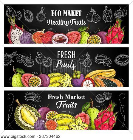 Exotic Fruits Sketch Vector Banners With Guava, Lychee And Passion Fruit, Pitahaya, Mangosteen And P