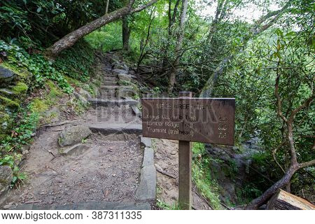 Hiking In The Great Smoky Mountains National Park. Trail Marker Along A Trail In The Smoky Mountains