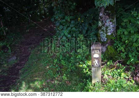 Asheville, North Carolina, Usa - August 14, 2020: Trail Marker For The Mountains To Sea Trail. The T