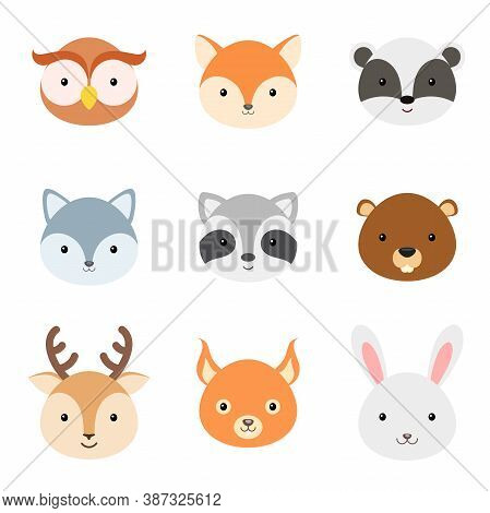 Cute Funny Animal Heads. Woodland Cartoon Animal Characters For Baby Print Design, Kids Wear, Baby S