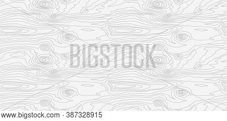 Wood Grain White Texture. Seamless Wooden Pattern. Abstract Line Background. Tree Fiber Vector Illus