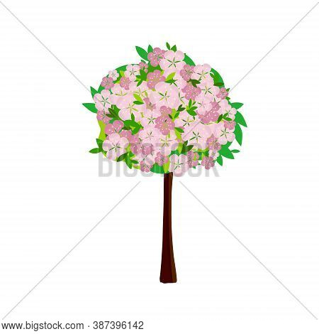 Sakura Tree Flat Design. Blooming Plant Pink Flower, Green Leaves Art Design Stock Vector Illustrati