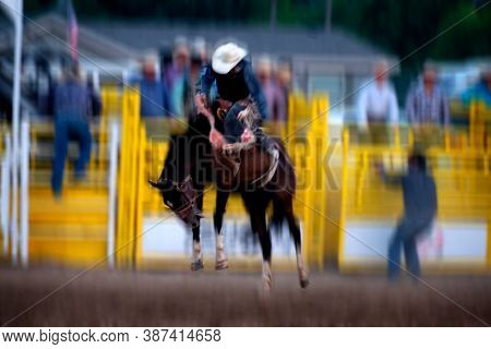 Cowboy riding bucking bronco at rodeo competition 8 seconds ride