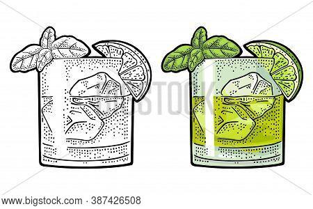 Cocktail Gin Basil Smash. Vintage Color Vector Engraving Illustration For Label, Poster, Invitation