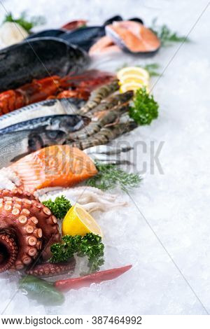 Side view of variety of fresh luxury seafood, Lobster salmon mackerel crayfish prawn octopus mussel and scallop, on ice background with icy smoke in seafood market.  Photo With Copy space.