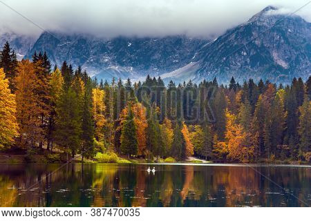 The Dolomites are covered with clouds. Orange and yellow trees are reflected in the green smooth water. Lake Fuzine in Northern Italy. Magnificent colors of autumn