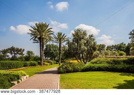 Israel. Stone paved scenic walkway. Warm sunny day. Great walk in a clean well-kept park. The magnificent botanical park on the slopes of Mount Carmel
