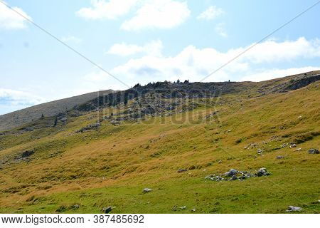 Massif Bucegi In Carpathian Mountains. Typical Landscape In The Forests Of Transylvania, Romania. Gr
