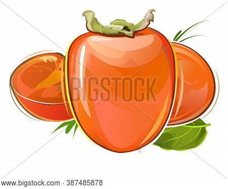 Persimmon. Summer Orange Fruit. Southern Exotic Garden Agricultural Plant. Autumn Southern Harvest.