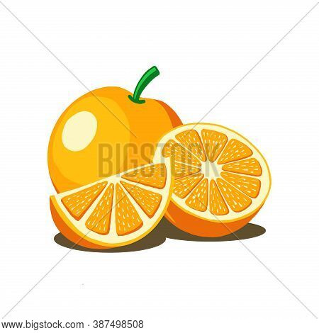 Orange Fruit Vector Isolated On White Background From Food Collection. Orange Vector Trendy And Mode