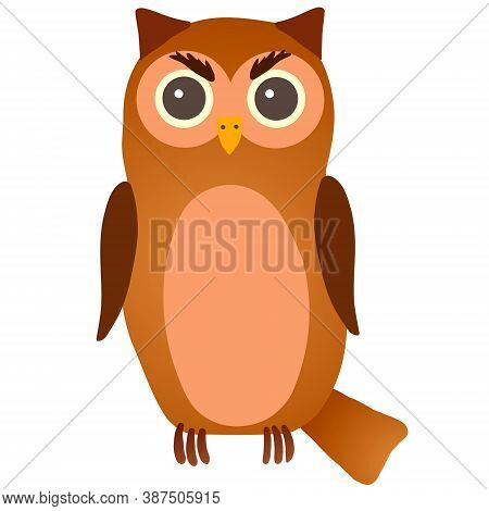 Vector Gloomy Brown Owl On White Background