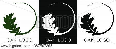 Autumn Oak Leaf Logo. Oak Grove, Natural Natural Materials. Vector In Minimal Style