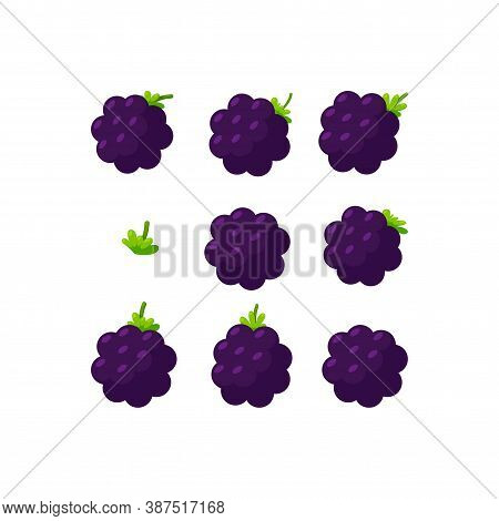 Blackberry Square Banner For Backgrounds. Organic Fresh Berries. Vector Illustration In Cute Cartoon