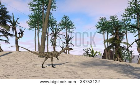 coelophysis walking