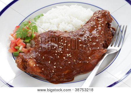 chicken with mole poblano sauce, mexican cuisine