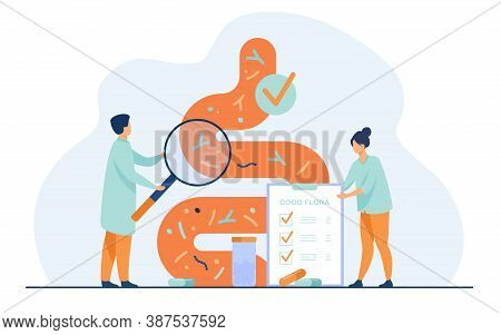 Tiny Medical Doctors Examining Gastrointestinal Tract And Digestive System Isolated Flat Vector Illu