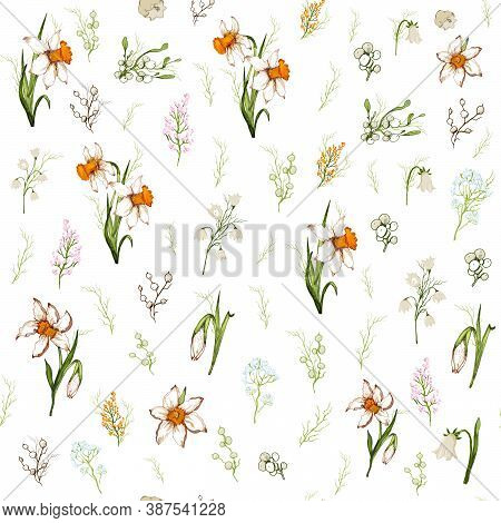 Seamless Pattern  Of White  Flowers Close-up. Primroses Flowers In The Style Of Realism (doodling).