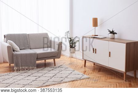 Living Room Interior Background With Comfortable Couch And Indoor Plants, Drawer And Carpet. Modern