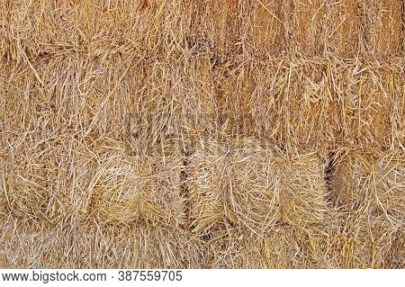 Hay Texture And  Background. Hay Bales Are Stacked In Large Stacks