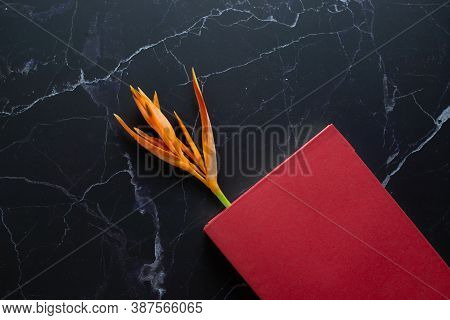 Orange Flower And Red Book, Placed On A Marble Floor, Top View.