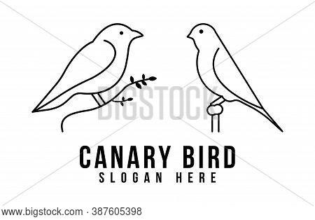 Line Art Canary Bird On Root Logo Icon Design Vector Illustration
